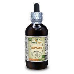 Alfalfa (Medicago sativa) Organic Dried Leaf Liquid Extract