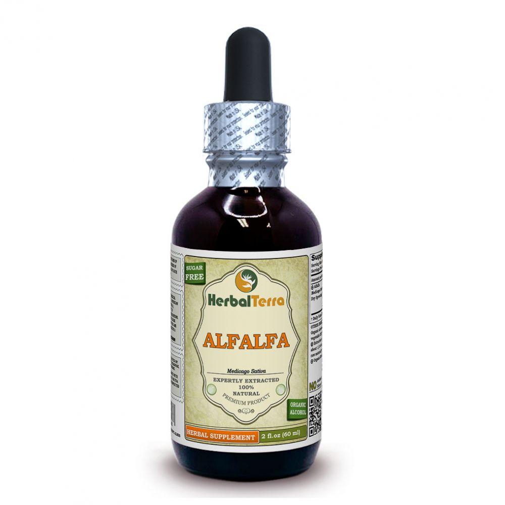 Alfalfa (Medicago sativa) Tincture, Sprouting Seeds Liquid Extract