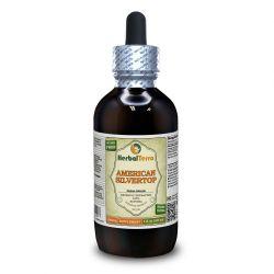 American Silvertop (Glehnia Littoralis) Tincture, Dried Root Liquid Extract
