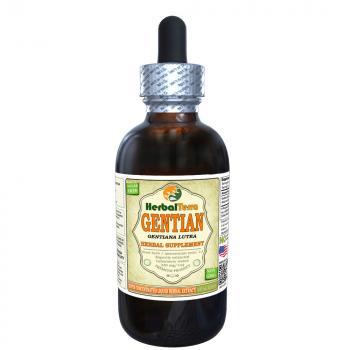 Gentian (Gentiana Lutea) Tincture, Organic Dried Root Liquid Extract