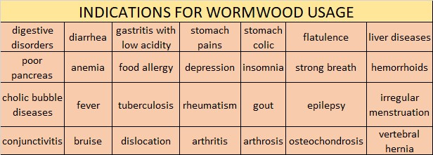 HEALTH BENEFITS OF WORMWOOD  BITTER EXPERIENCE